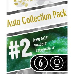 Auto Collection pack No-2