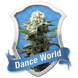 Dance World