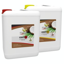 Coco A&B 10L