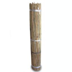 Tutores de Bambú 1,5m (500...